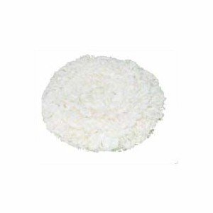 カーペット洗浄用品 「シーバイエス:13インチ用 ヤーンパッド 」 kikumi