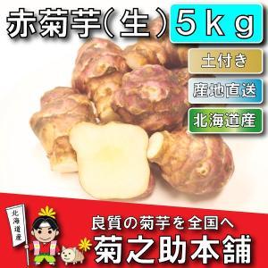 【条件付き送料無料】今話題の菊芋 北海道産 無農薬 化学肥料不使用 生 土付き 赤 5kg kikunosukehonpo