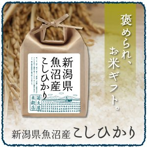 ギフト 米 2kg 新潟県魚沼産こしひかり(29年産)玄米|kikutayakitchen