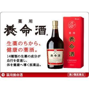 【第2類医薬品】養命酒1000ml|kikuya174