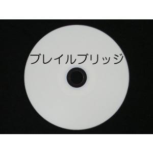 ブレイルブリッジ Ver2 (新規版) ※個人価格|kilalinet