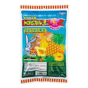 フルーツ王国 トロピカル3 Lパック 160gの関連商品10