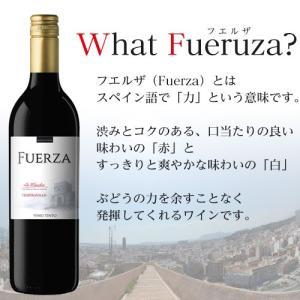 『スペイン直輸入』フエルザ・ティント 赤ワイン Fuerza Vino 1箱(12本)|kilat|03