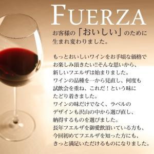 『スペイン直輸入』フエルザ・ティント 赤ワイン Fuerza Vino 1箱(12本)|kilat|04