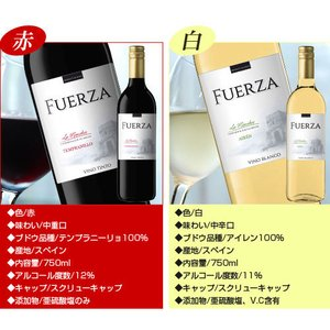 『スペイン直輸入』フエルザ・ティント 赤ワイン Fuerza Vino 1箱(12本)|kilat|06
