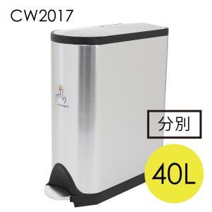シンプルヒューマン CW2017 バタフライ リサイクラー ステンレス ゴミ箱 40L simplehuman