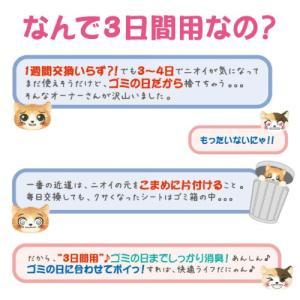 第一衛材 P.one にゃんにゃん 猫シート 3日間用 プチ 1枚 NSP-004 ピーワン 国産|kilat|05