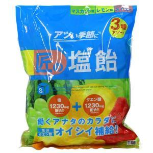 購入単位:1袋  4987696278653 QE1165 qe1165 食品 健康食品 栄養補助 ...