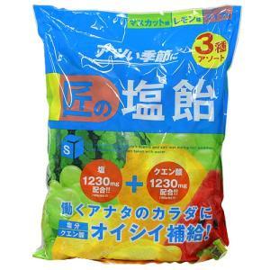 購入単位:1袋  4987696278646 QE1166 qe1166 食品 健康食品 栄養補助 ...