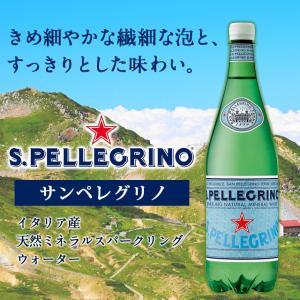 サンペレグリノ 炭酸水 SAN PELLEGRINO 500ml×48本  『送料無料』|kilat|04