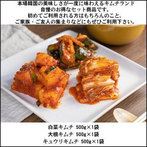 定番 キムチ 3点セット 1.5kg 3人〜用 韓国直輸入 kimchiland 02