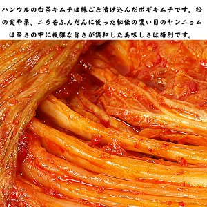 白菜キムチ 熟成 旨口 発酵食品 1kg 韓国ハンウル|kimchiland|02