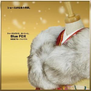 ブルーフォックスショール Blue Fox 狐ショール 成人式 洋装にぴったり|kimono-cafe