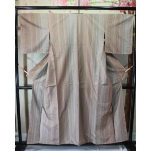 未使用/ 伊那紬|kimono-himesakura
