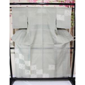 未使用/ トンボ柄・紗紬の付下げ kimono-himesakura