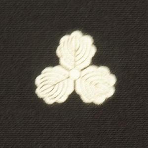 紋入れ 五つ 色留袖 kimono-japan