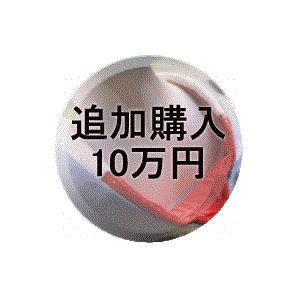 追加購入10万円|kimono-kobo
