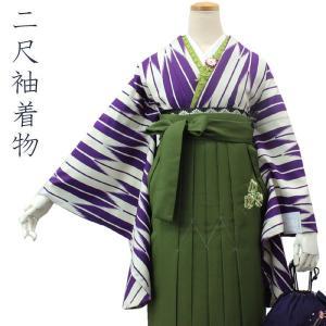 二尺袖着物 袴用着物 クリーム地矢絣柄 フリーサイズ 卒業式 女性 着物 単品 洗える着物 和服 送料無料|kimono-kyoukomati