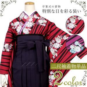 卒業式 二尺袖 着物 購入 送料無料 単品 販売 着物のみ フリーサイズ 大学生 赤 紫 黒 よろけ縞 梅 菊 柄 和装 和服 大人 女性 レディース セール対象外|kimono-kyoukomati