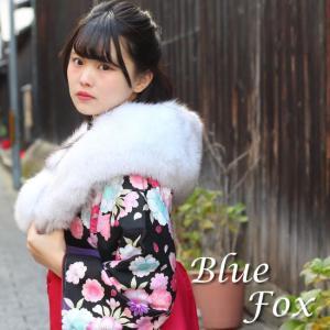 送料無料 ファー 振袖 成人式 卒業式 白 ブルーフォックス フィンランド 日本製 単品 fox レディース 着物 和装 ホワイト 女性 購入 tbクオ|kimono-kyoukomati