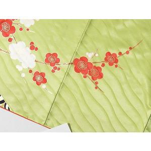 洗えるキモノ【附下げ】未使用 仕付けアリ 袷 重ね衿付き/琳派絵図 観世水に紅梅白梅 若草色☆152cm前後ベスト【美品】|kimono-maruichi|13