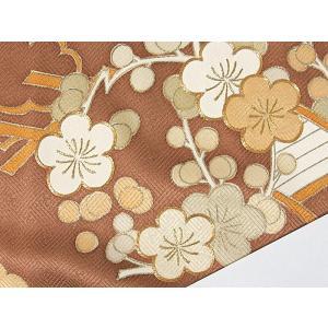 さらに値引きしました30%OFF 色留袖 正絹 共八掛 3つ紋(金糸縫い紋) 雲取りに花車 揚羽蝶 154cm前後ベスト 美品|kimono-maruichi|17