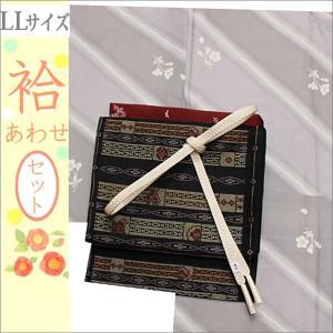 洗える着物セット 帯と着物セット LLサイズ レディース 小紋 4点 名古屋帯 袷 グレー地に花柄の着物と黒地に幾何学柄の帯 kimono-waku