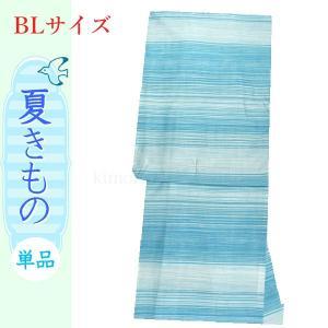 夏着物 洗える着物 絽 LLサイズ BLサイズ 水色地に横段柄|kimono-waku