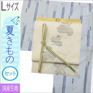 夏着物セット 洗える 絽 紗 Lサイズ 水色地にトンボ柄の着物と白地に萩柄の帯|kimono-waku