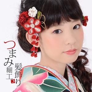 振袖 髪飾り2点セット「赤色系のつまみのお花、下がり飾り」