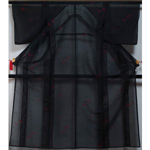 黒色の紗地にラインに枝の実模様が地織された夏物の小紋です。  ◆仕立:単衣 居敷当て無し・背伏せ付き...