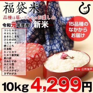 新米!【令和元年:滋賀県産】【福袋米】 白米 10kg 【送料無料】 10kg×1袋でのお届けです♪