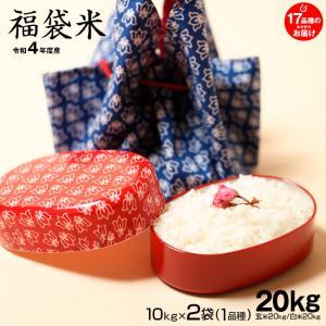 福袋米 白米20kg(10×2袋)【平成29年:滋賀県産】...