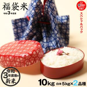 福袋米スペシャルパック 白米10kg(5×2袋)【平成29年:滋賀県産】...
