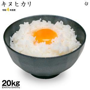 5月の特別米 お米 キヌヒカリ 玄米20kg 白米20kg 平成30年度 滋賀県産 きぬひかり 2018|kimsho