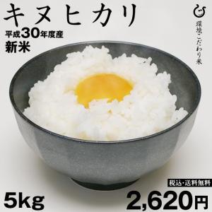 お米 キヌヒカリ 玄米 5kg 平成30年 滋賀県産 2018|kimsho