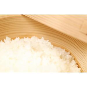 エイプリルセール お米 キヌヒカリ 玄米/白米10kg 平成30年度 滋賀県産 2018|kimsho|02