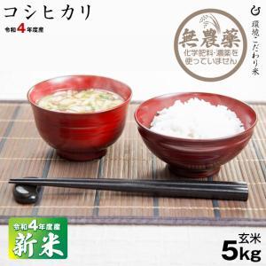 無農薬 お米 コシヒカリ 環境こだわり米 玄米5kg 平成30年 滋賀県産 2018 kimsho