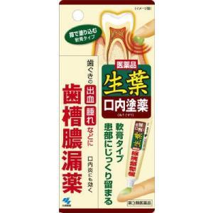 「第3類医薬品」生葉口内塗薬  20G|kimuraya-select