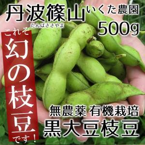 丹波篠山いくた農園の無農薬 有機栽培の黒大豆枝豆500g 枝無しサヤだけの正味重量です!(黒豆枝豆) 冷蔵限定 グルメ