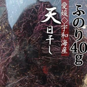 愛媛県宇和海産 乾燥ふのり40g (乾燥海藻類) 天日干し 非加熱 お刺身のツマ、サラダ、お味噌汁に リピート率NO.1