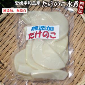 愛媛宇和島産 たけのこ水煮180g(無漂白・薬品不使用)煮炊きに最適 孟宗竹(モウソウダケ/モウソウチク)という一般的な品種