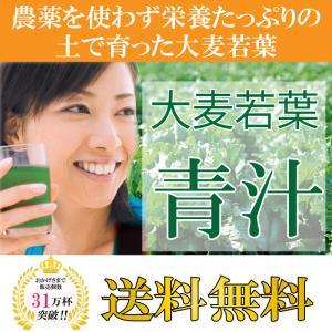 送料無料大麦若葉 青汁 (3g×63袋入) 5箱分 315P 緑黄色野菜を簡単摂取 代引き不可 kinchan