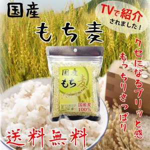 国産もち麦 100% 脱メタボ 食物繊維 食品 もち麦 ムギ...