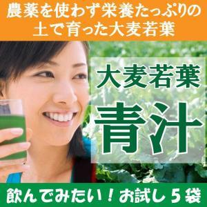 送料無料 お試し(おためし) 商品 大麦若葉 青汁(あおじる) 3g×5袋 最安|kinchan