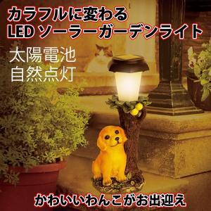 ガーデンソーラーライト イヌの仲間たち ネコの仲間たち|kinchan