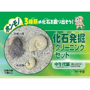 化石発掘クリーニングセット 中生代篇  FC002 kinokuniya