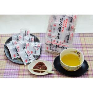 はちみつ種なし干梅|kinoya-kawabe-foods