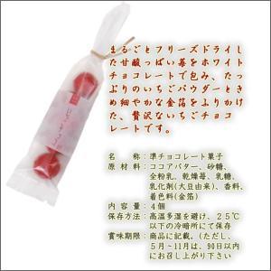 袋菓子 金箔いちごチョコ|kinpakuya|02