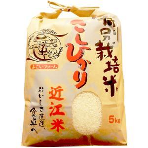 近江米こしひかり5kg|kinse-kyo-tsukemono